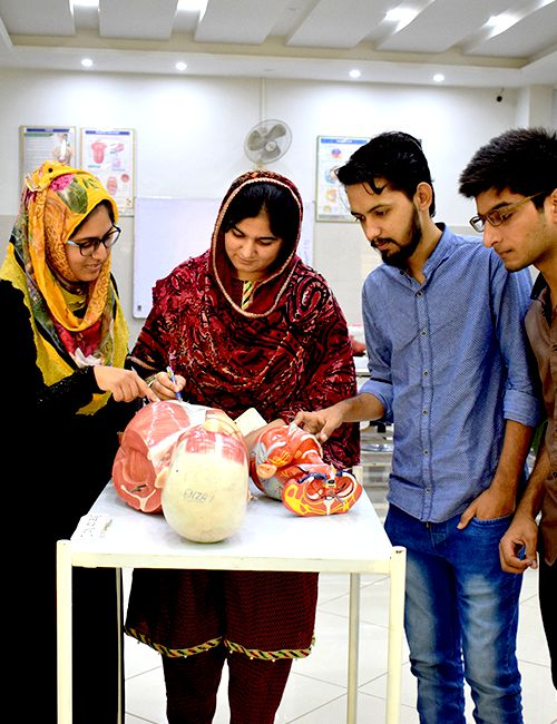 Labs-Anatomy-Pak-Red-Crescent-Medical-College