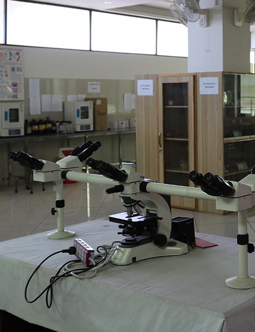 Research-PRCMDC